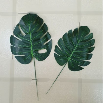 Monstera Leave Bajet Size M and L / Daun Monstera Size M and L (1 pcs)